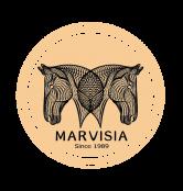 玛维莎总部旗舰店开业庆典暨全球首批加盟商签约仪式
