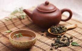 2019年下半年各地茶博会举办